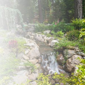 Wichita Kansas Landscape Water Fall Water Feature Maintenance